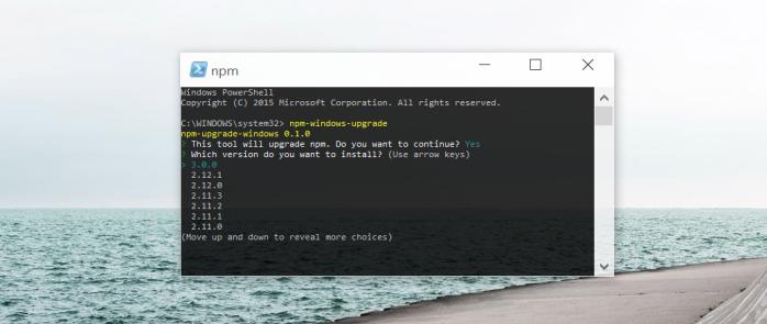 npm-windows-upgrade tool